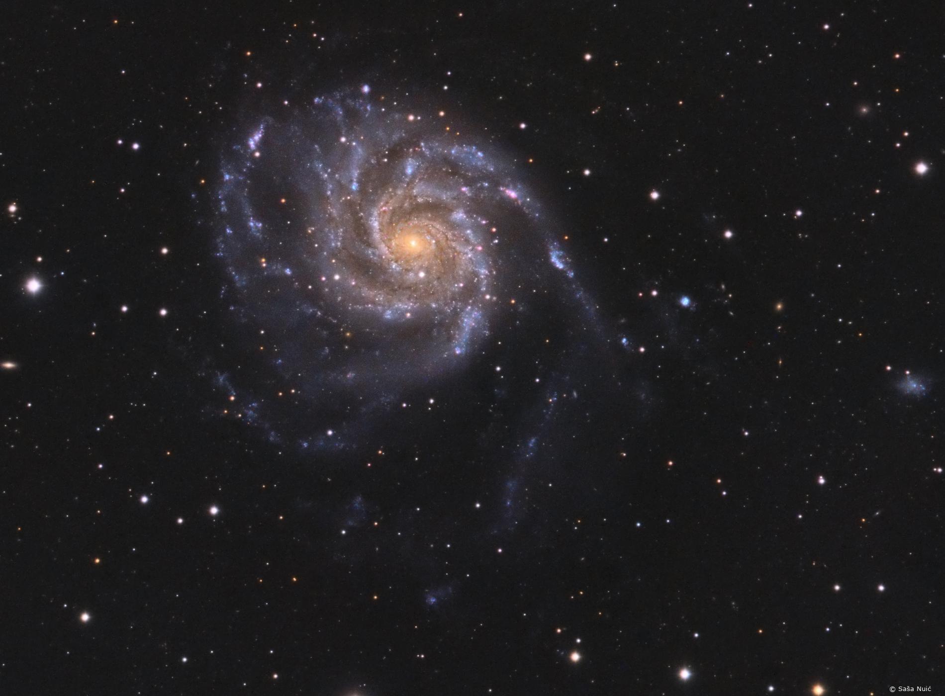 Galaksija Messier 101