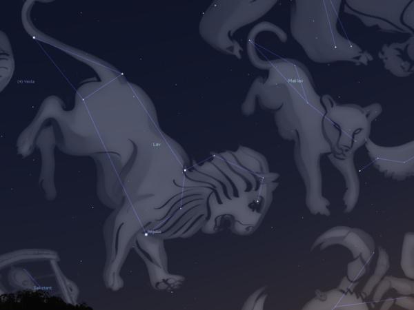 Zvjezdane vedute – mačke među zvijezdama