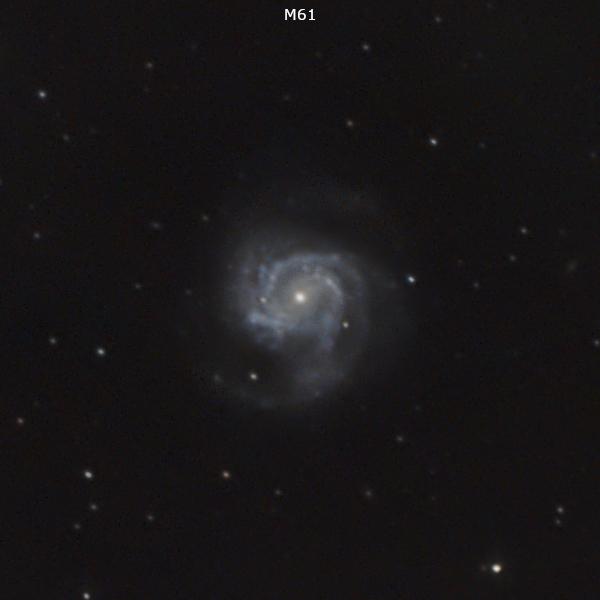 Galaksija M 61