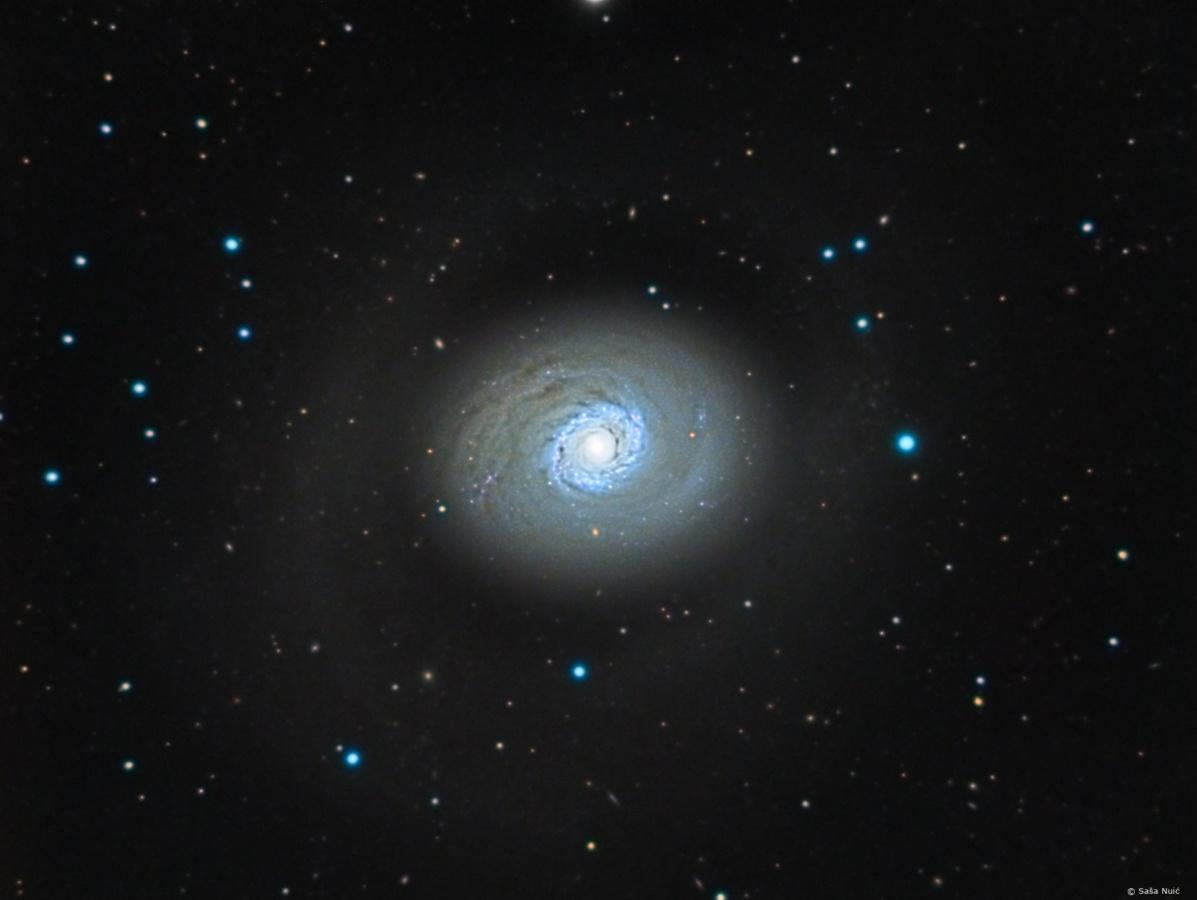 Galaksija M94