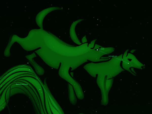 Zvjezdane vedute – Lovački psi (Canes venatici)